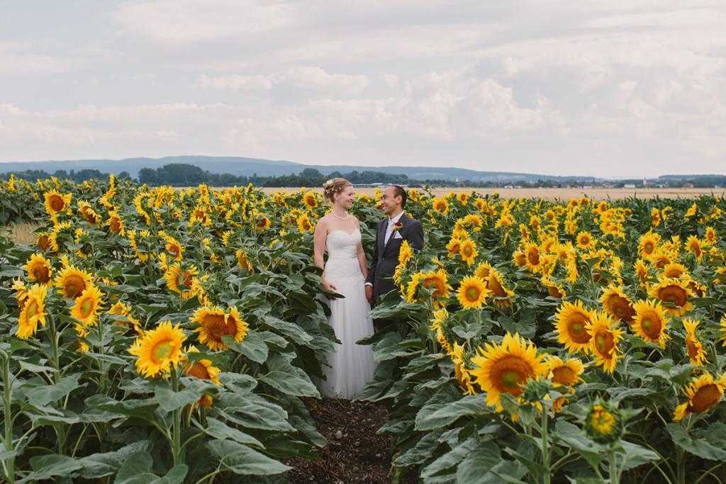 027-vienna-sunflower-fields-wedding-photography
