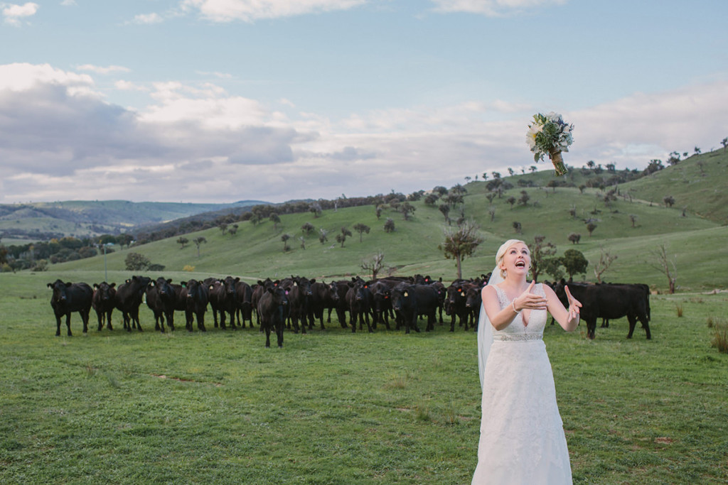 049-southern-highlands-bride-tossing-the-bouquet-to-the-cows