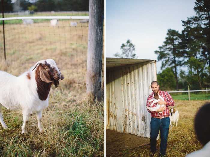 farm-engagement-session-goats