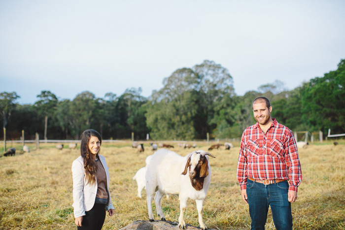 farm-goat-photographer-sydney