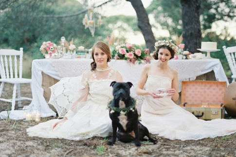 bride-and-dog
