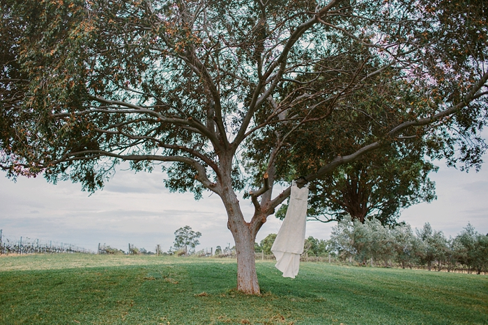 wedding gown in the tree at the wandin