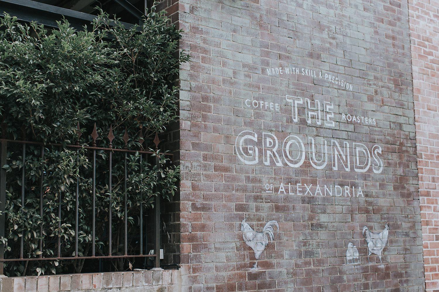 the grounds of alexandria outside hunter st