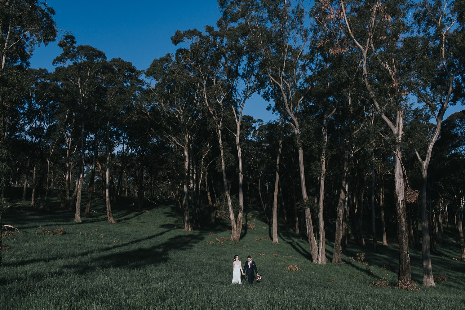 southern highlands wedding photos