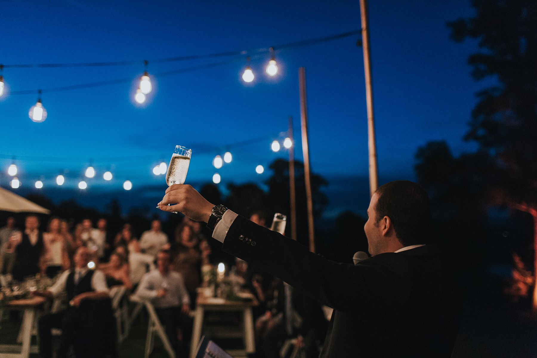 toast at wedding reception