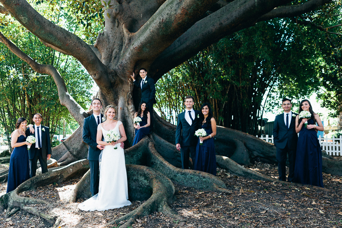 bridal-party-with-large-tree