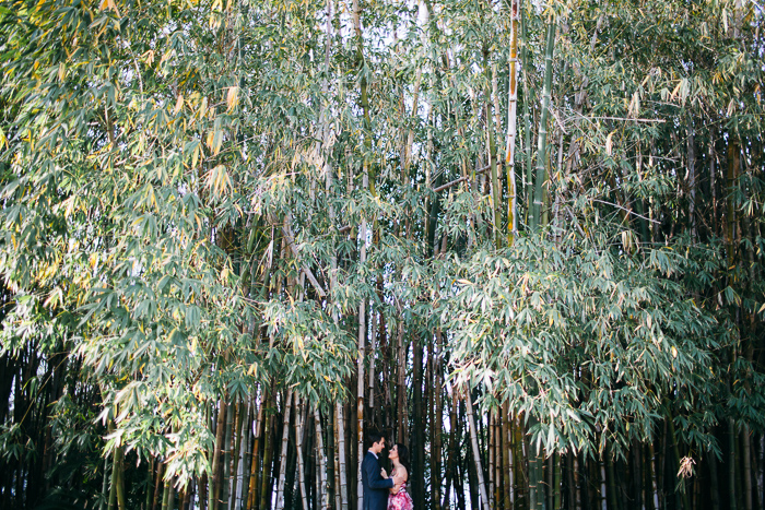 yaralla-estate-engagement-photography