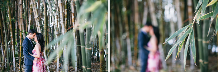 west-sydney-engagement-photographer