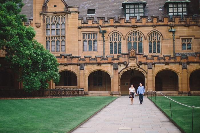 jacaranda-tree-sydney-university