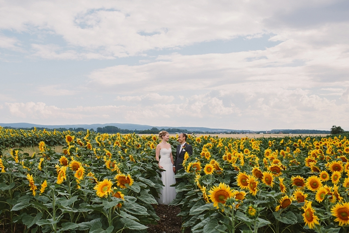 vienna sunflower field wedding photography