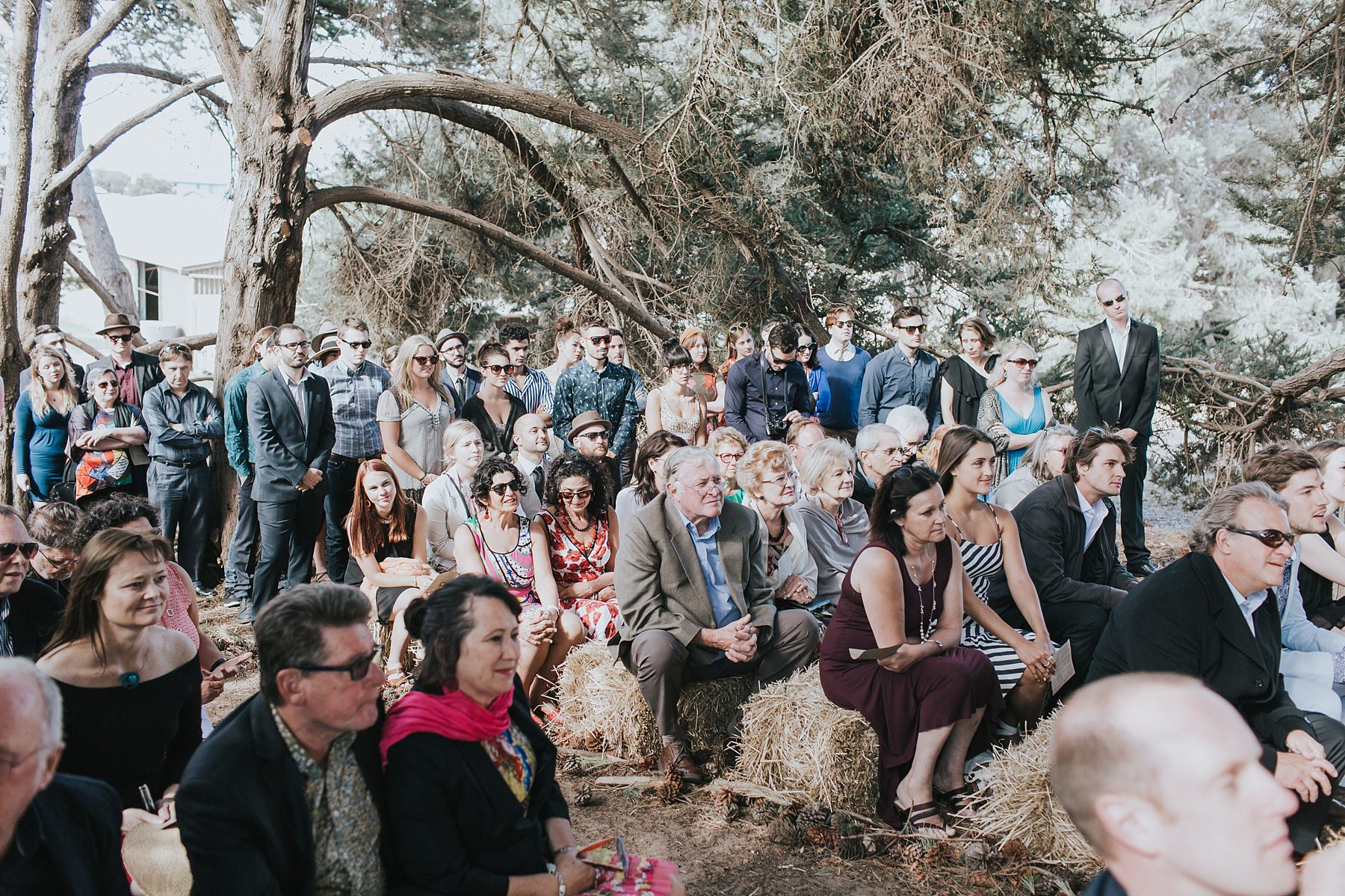 guests seated at a farm wedding