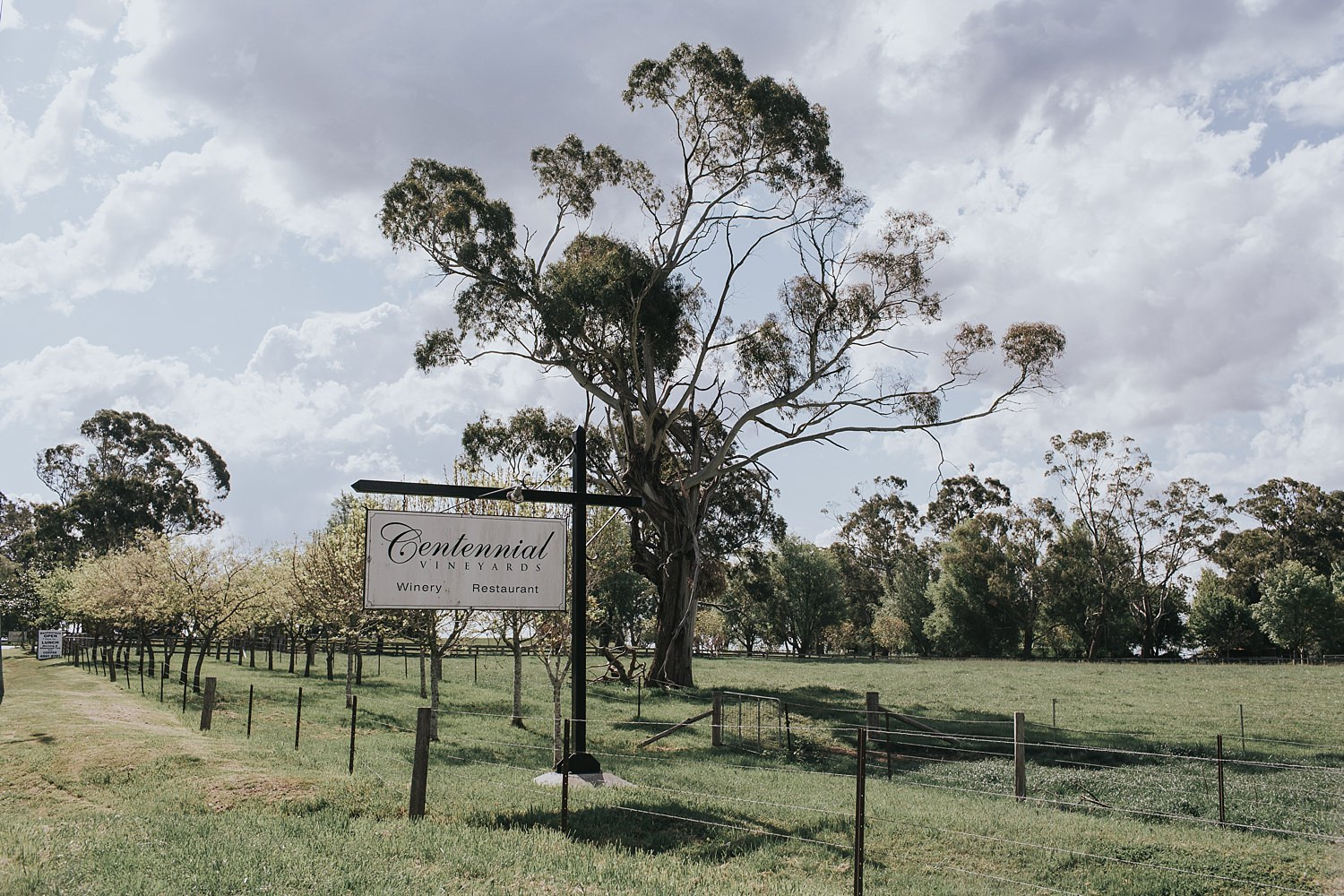 centennial vineyards restaurant bowral