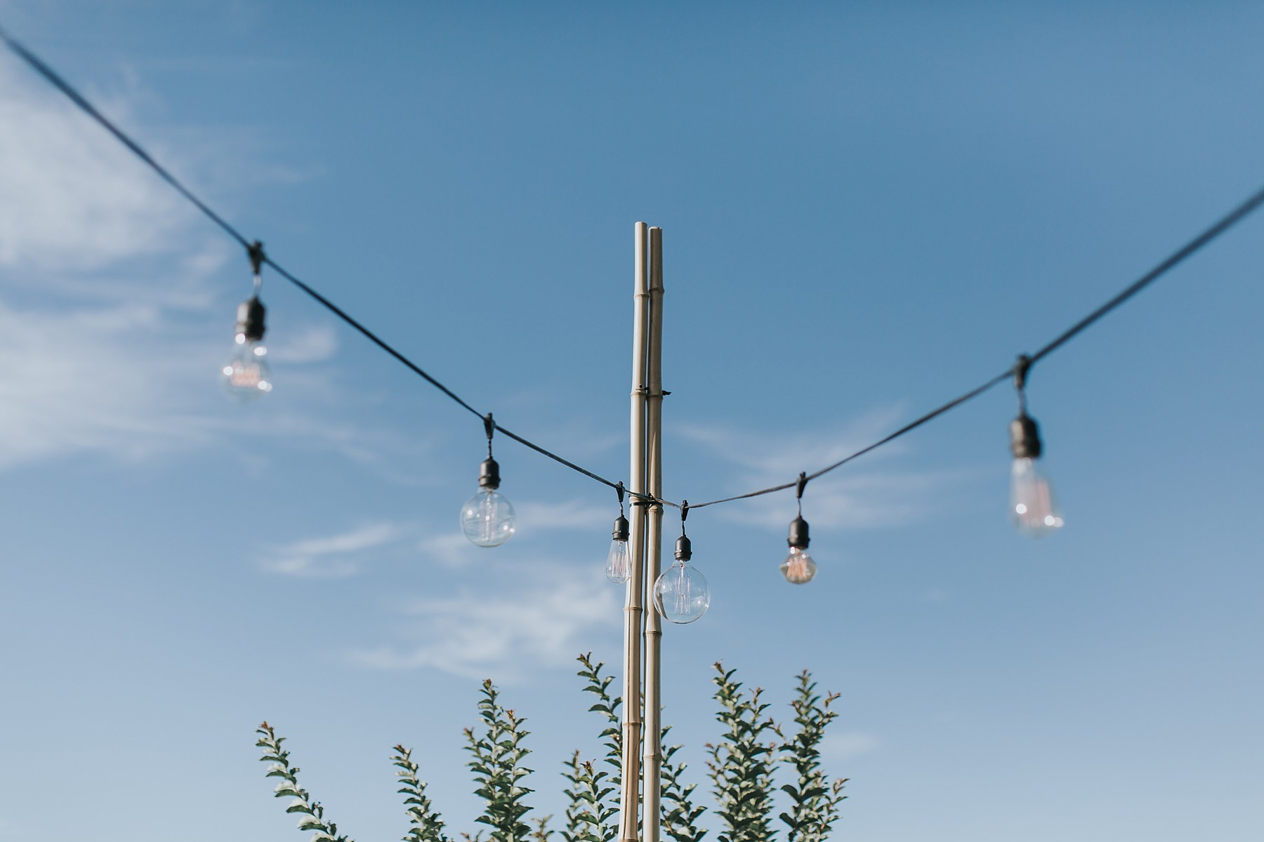 outdoor festoon lights at cornwallis house