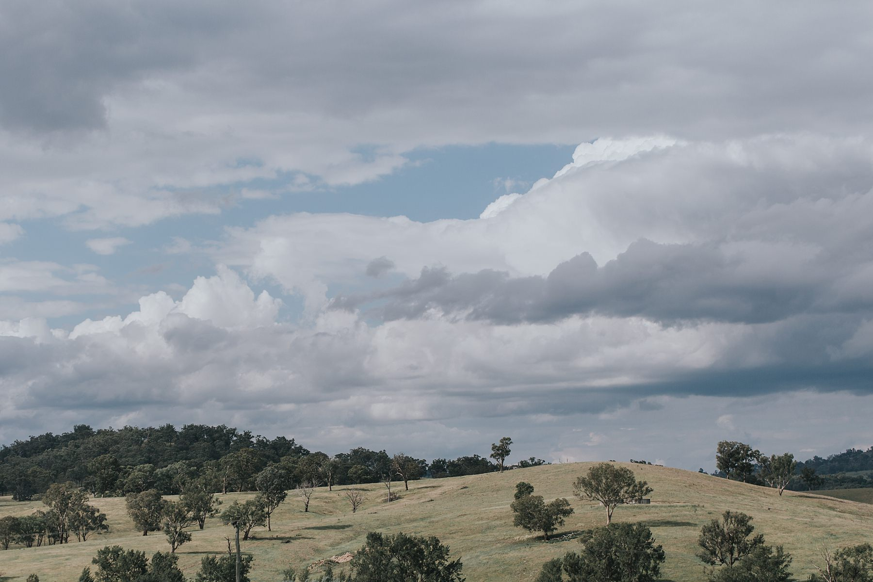 mudgee country wedding