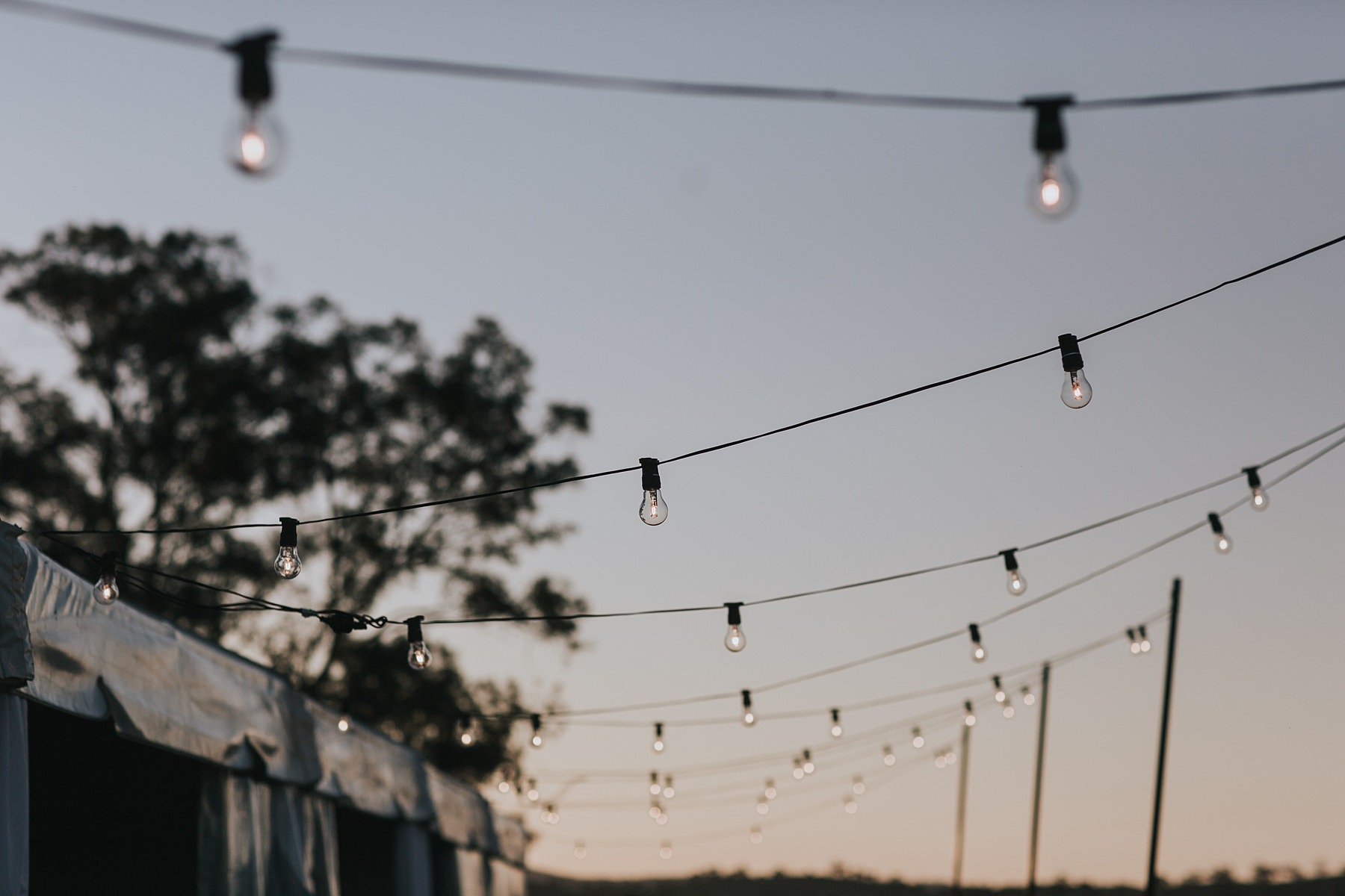 festoon lighting at mudgee outdoor reception