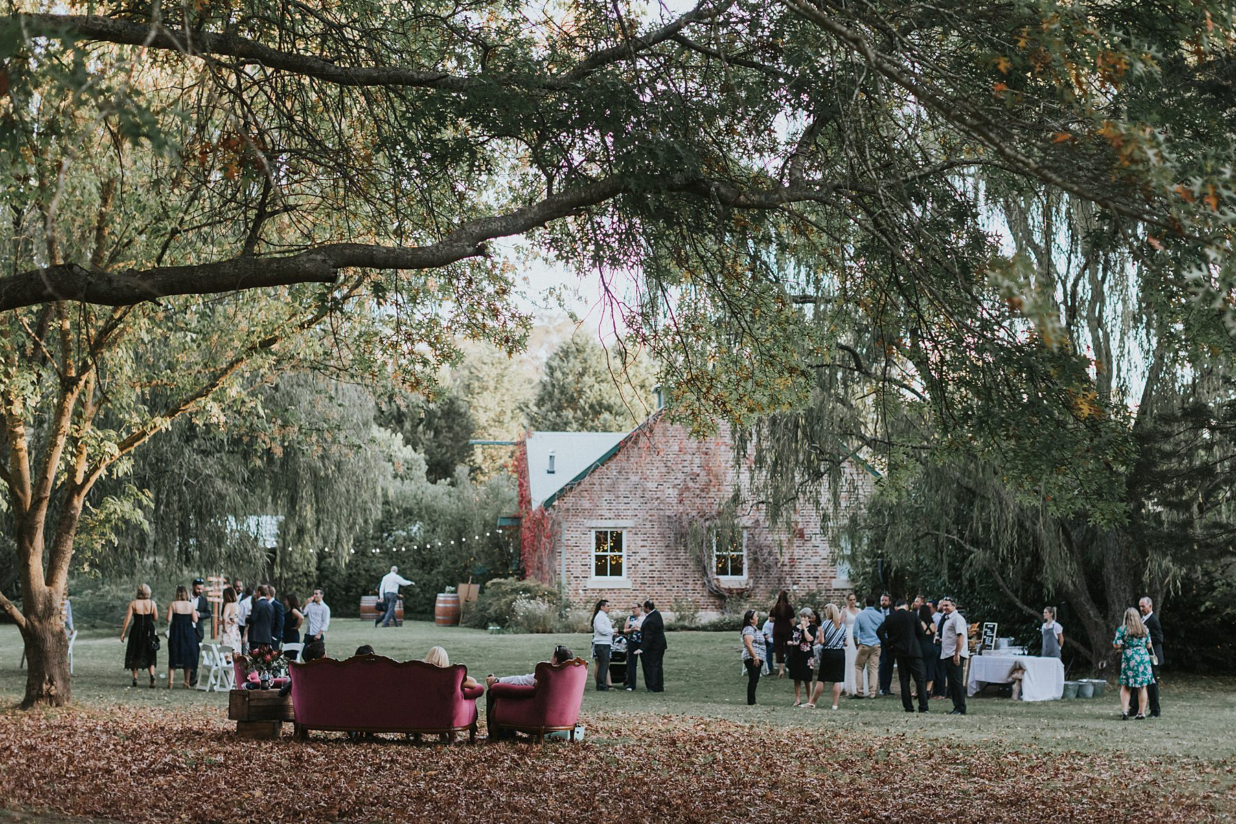 montrose berry farm wedding photography