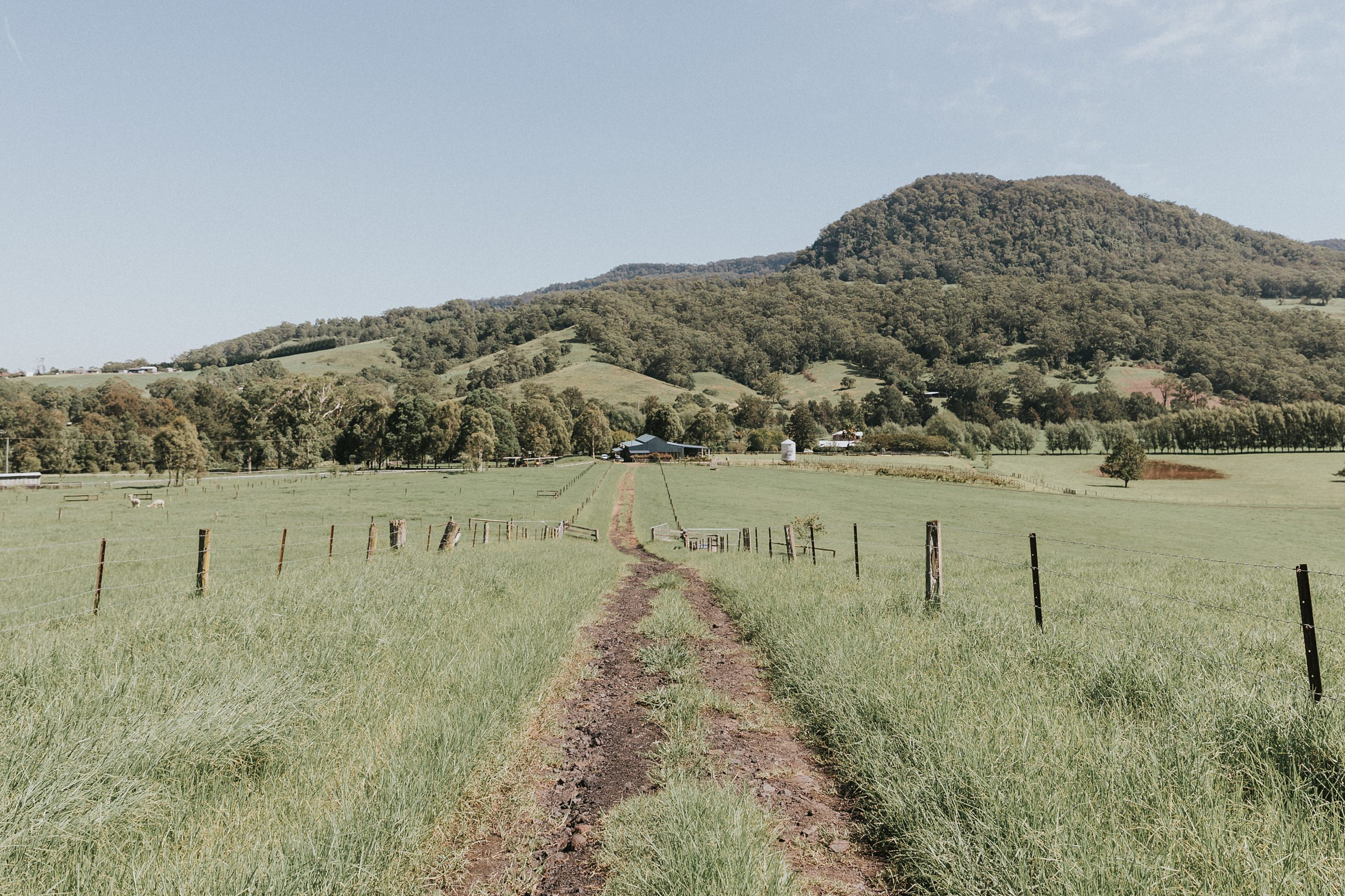 kangaroo valley landscape photography
