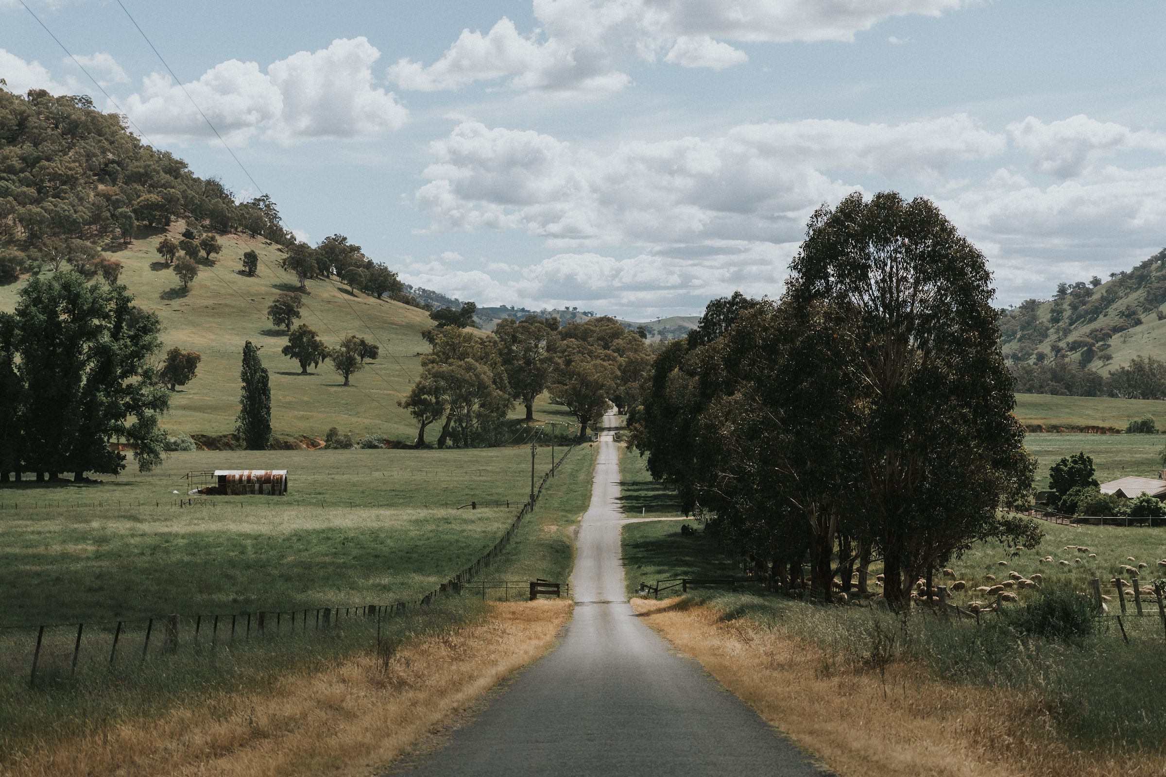 country road leading to nimbo fork lodge in tumut